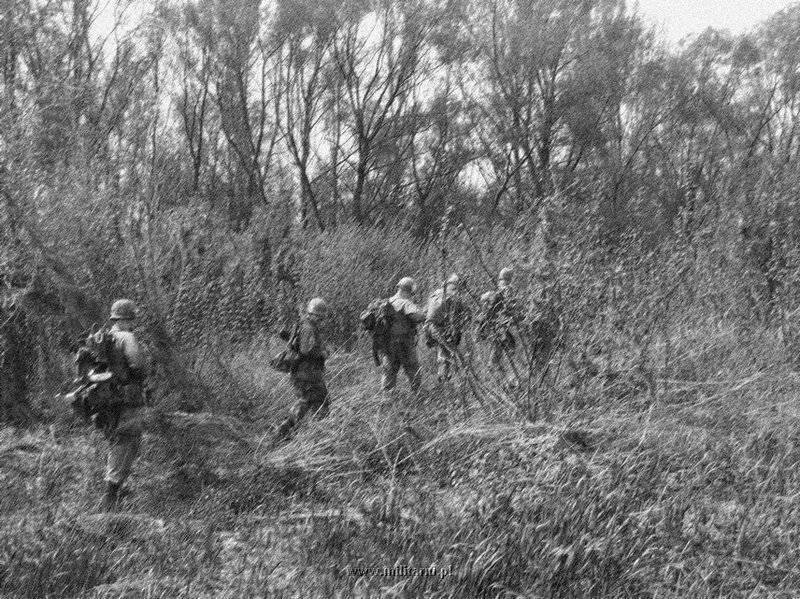 ハンバーガー・ヒル↑攻撃開始1日目。進撃する第101空挺師団の兵士たち。1969年5月10日。.jpg